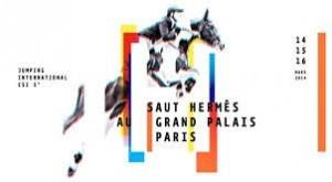 Le Saut Hermès au Grand Palais à Paris
