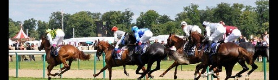 visit paris and france Prix de Diane, horses race near Paris