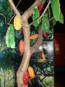 Chocolate cloves on the tree - museum of chocolate, Choco Story, an original activity in Paris (what to do in Paris around French gastronomy)