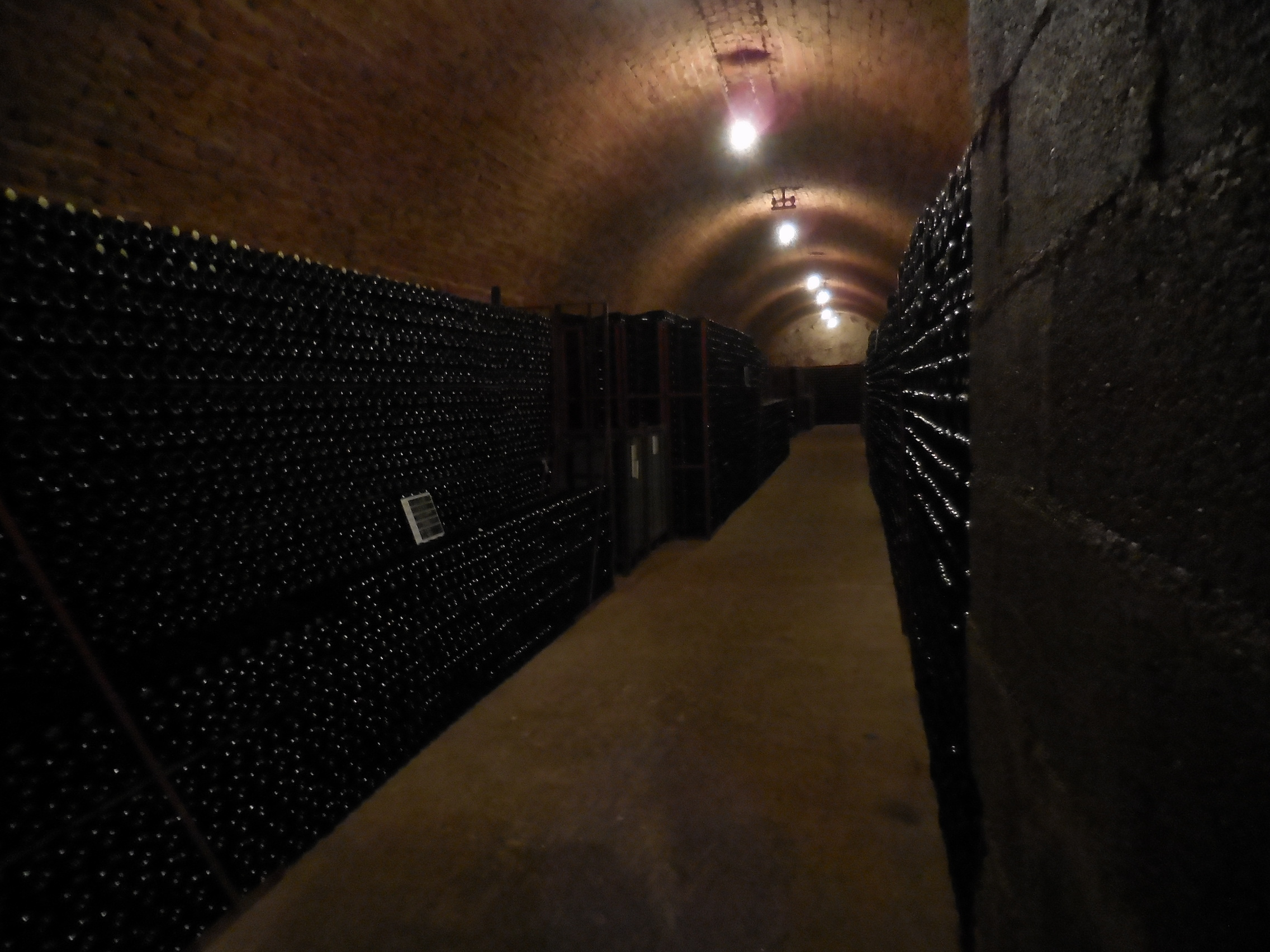 Champagne cave, cellar, bottles of champagne, champagne tasting, visit of a cellar, producteur local de champagne