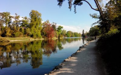 Bois de Boulogne, Jogging in Paris