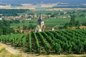 Reims - The Champagne Region of France, Champagne tour