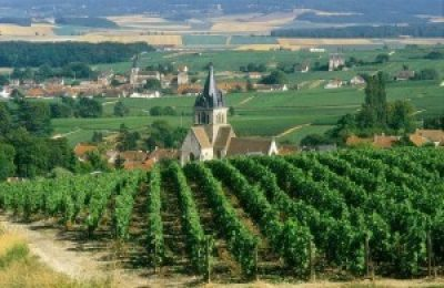 Reims - The Champagne Region of France, Champagne tour, Reims - la region de Champagne en france