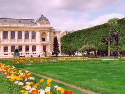 Things to do in summer in Paris