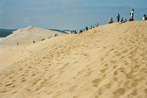 dune of pilat, bordeaux wine trip