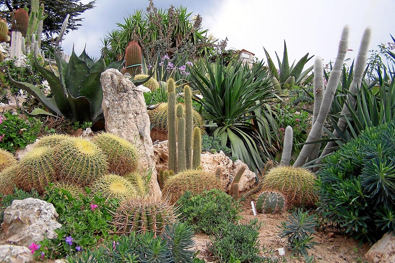 Exotic Garden Of Monaco Parisbym