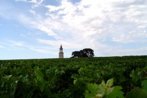 medoc, bordeaux wine trip in 3 days