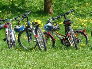 loire valley bike tours