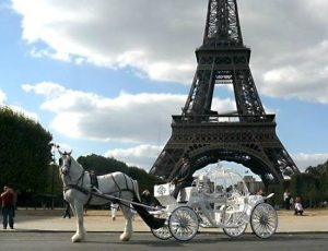 horse carriage, unusual ways to tour, paris