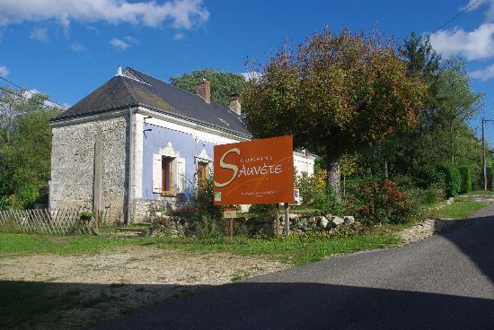 loire valley vineyards